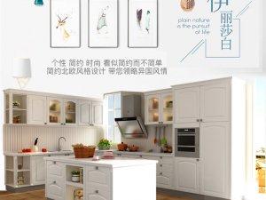 金牌厨柜伊丽莎白系列设计效果图 欧式风格橱柜设计图