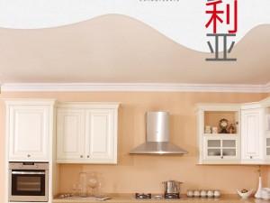 柏厨厨柜图片 欧式新古典风格橱柜维多利亚系列