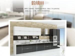 丽博整体橱柜图片 简约风开放式厨房厨柜效果图