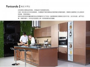 卡利亚不锈钢厨柜效果图 帕尼卡罗拉系列整体橱柜图片
