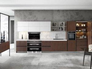 欧诺尼集成灶 集成灶厨房装修效果图