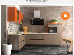 欧派橱柜图片 整体橱柜定制l型厨房装修效果图