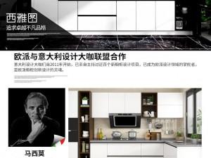 欧派橱柜图片 定做整体厨房橱柜装修效果图