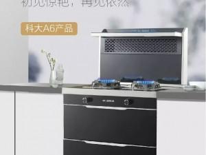 科大集成灶产品图片  欧式现代简约厨房装修效果图