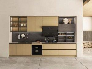诗尼曼橱柜图片 新品可可西里系列产品效果图